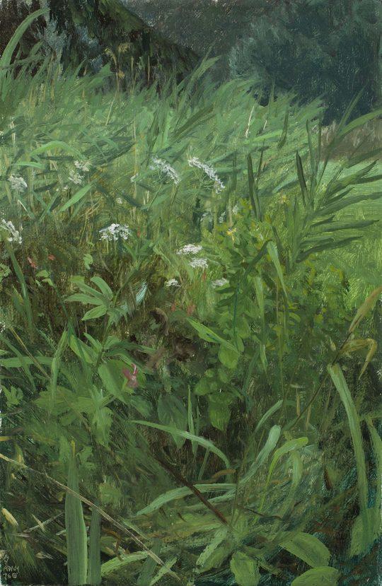 Javornická louka, olej, plátno, 30 x 20 cm, 2016