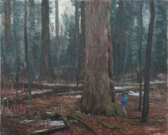 Nikola na Udavě, olej, plátno, 30 x 35 cm, 2016