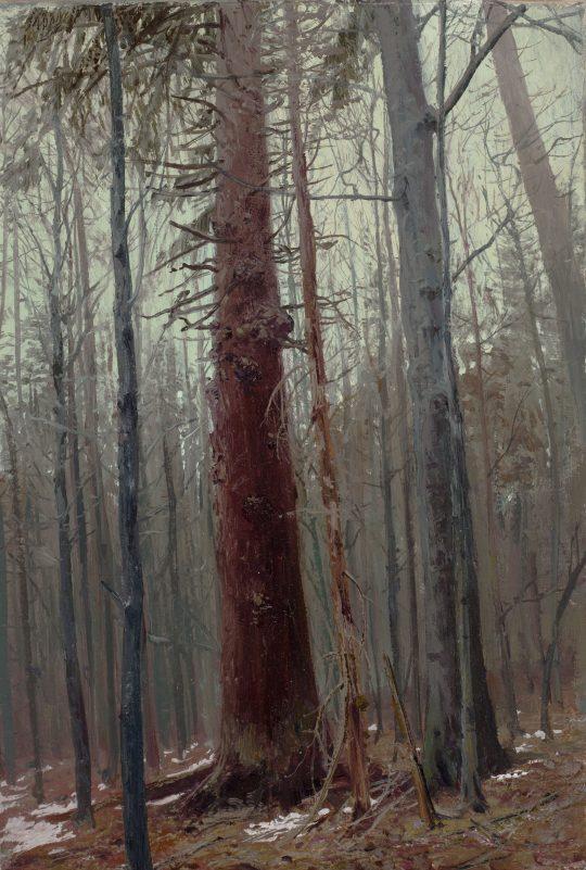Trčkov, olej, plátno, 30 x 20 cm, 2014