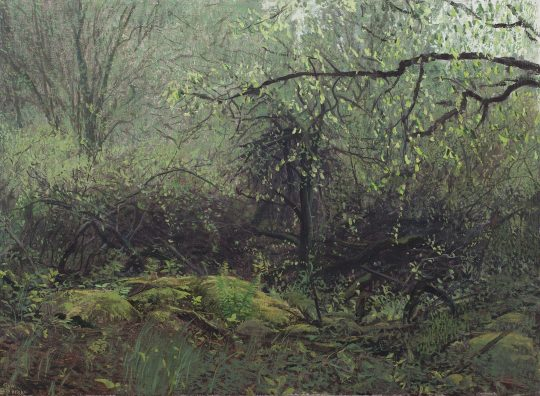 Polná, olej na plátně, 40 x 50 cm, 2016
