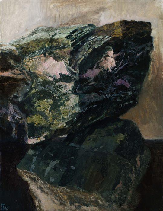Amfibolit (Křetínka), olej, plátno, 45 x 35 cm, 2016