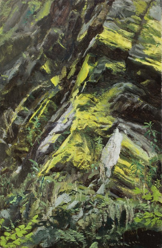 Psylolechia lucida, olej, plátno, 30 x 20 cm, 2016
