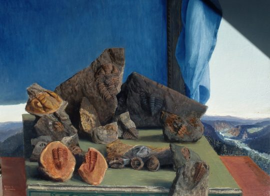Ordovik, olej, plátno, 50 x 70 cm, 2015