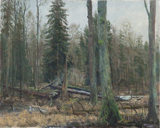 Lesy a mezihoří, olej, plátno, 30 x 35 cm, 2015