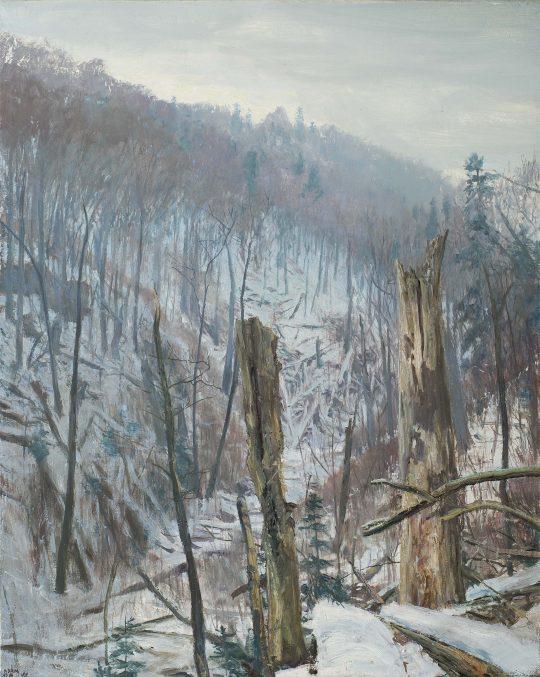 Lovětínská rokle, olej, plátno, 40 x 50 cm, 2017