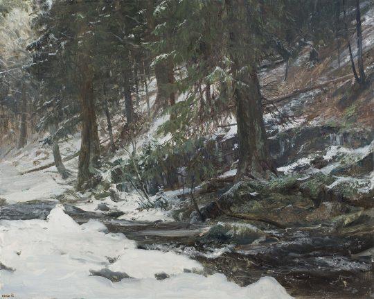 Střední Opava, olej, plátno, 40 x 50 cm, 2016