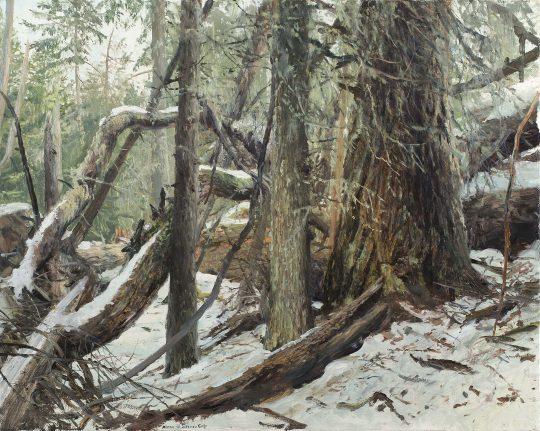 Zedlach, olej, plátno, 40 x 50 cm, 2017