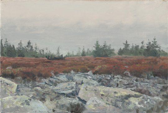 Na Břidličné, olej na plátně, 20x30 cm, 2017