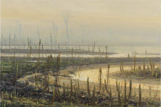 Devonský les, olej na plátně, 40x60cm