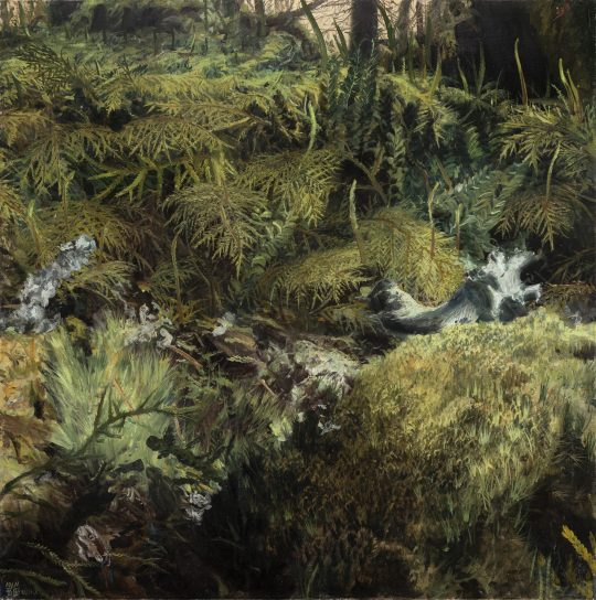 Mechy od Blanice, olej na plátně, 60x60cm, 2020 x
