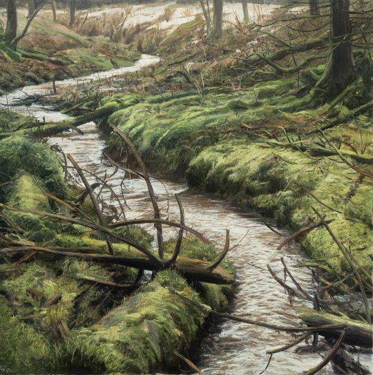 Potok s Měříkem pilovitým, olej na plátně, 60x60cm, 2020 x