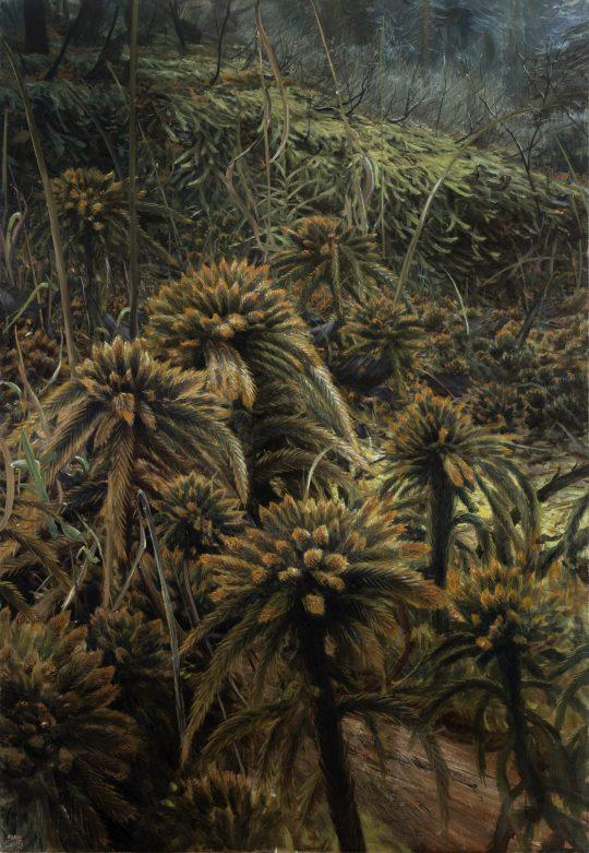 Rašeliníky, olej na plátně, 130x90cm, 2019
