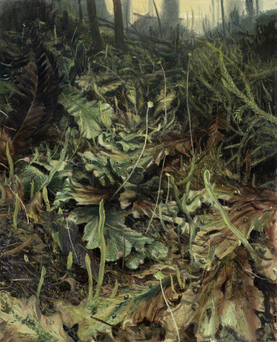 Játrovky - devonský les, olej na plátně, 75x60cm, 2019