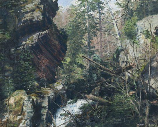 Rešovské vodopády, olej na plátně, 40x50cm, 2018