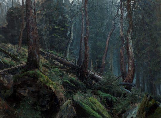 Suťová javořina, olej na plátně, 50x65cm, 2017