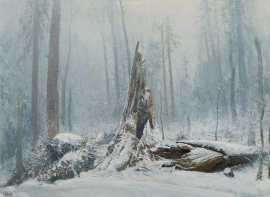 Vývrat, PR Františkov, olej na plátně, 50x65 cm, 2017