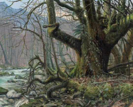 Sutjeska, olej na plátně, 40x50cm, 2021
